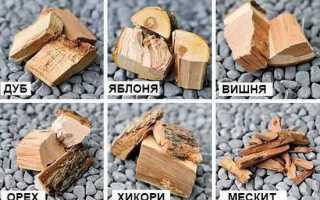 Древесина для копчения продуктов — выбор и особенности применения